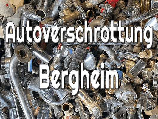 Autoverschrottung Bergheim