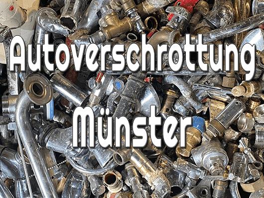 Autoverschrottung Münster