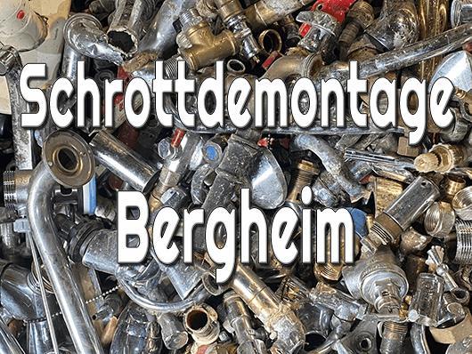 Schrottdemontage Bergheim