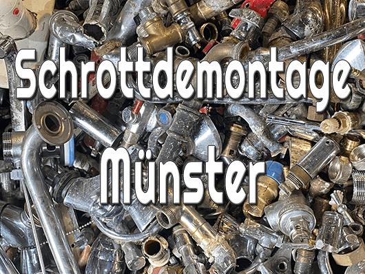Schrottdemontage Münster