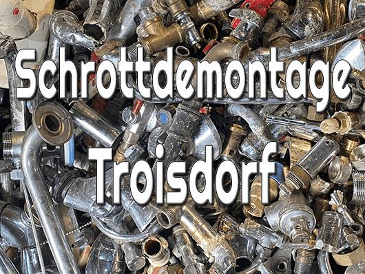 Schrottdemontage Troisdorf
